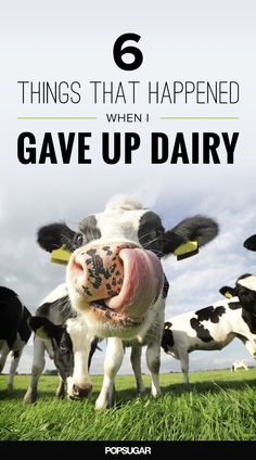 I had no idea how my body would change within just 2 months of giving up dairy!