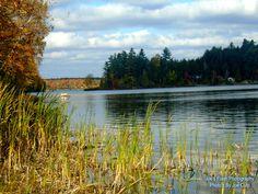 Autumn Beauty on Isabella lake autumn 2015