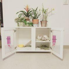 Indoor rabbit hutch                                                                                                                                                      More