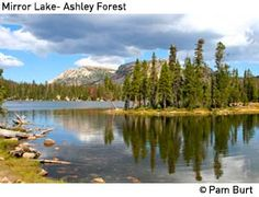 Vernal - Mirror Lake, Ashley NF