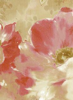 BELLA ROSA Galerie Wallpaper5808