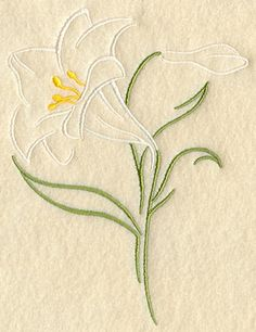 Easter Lily Drawing | Light and Lovely Easter Lily