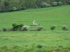 winterbourne dorset england   Ruined church, Winterbourne Farringdon [2011]. Traces of the deserted ...