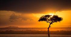 Le Sphinx, Le Nil, Florence Nightingale, Nairobi, Zimbabwe, Casablanca, Continents, Kenya, Location History