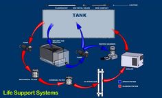 the life support system for a fish is an aquarium - Google Search