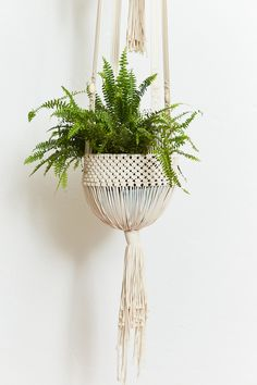 Lerne Inspiration / Anleitung / Muster / Makramee Source by nvdecollective Hanging Plants, Shabby Chic Furniture, Plant Hanger, Making Ideas, Macrame, Inspiration, Diy, Instagram, California