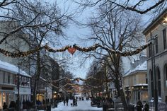 Countdown to Christmas 2016 - Week 1 - Norway Christmas Countdown, Christmas 2016, White Christmas, Christmas Gifts, Pleasing Everyone, Dog Design, Continents, Countryside, Planets