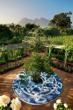 Blue & white china patio w/ peach tree in the center - Babylonstoren, a hotel/winery in the South Aftrican Dutch Cape