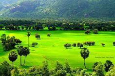 Tà Pạ, An Giang  #Vietnam #Travel #Paddy #Field #AnGiang