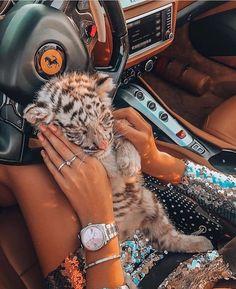 List of 20 best Funny Animals Wild in week 7 Cute Puppies, Cute Dogs, Cute Babies, Puppies Puppies, Cute Little Animals, Cute Funny Animals, Super Cute Animals, Super Rich Kids, Rich Kids Of Instagram