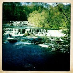 The Falls at Aysgarth for a perfect picnic & paddle