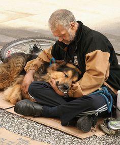 Man's Best Friend (pic #1)