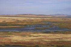 Malheur bird refuge, Oregon