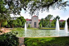 University of Houston... not my favorite place, but it IS my alma mater.
