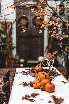 A table with pumpkins outside in the fall! Samhain, Mabon, Fall Inspiration, Autumn Cozy, Autumn Diys, Autumn Rain, Autumn Morning, Fall Decor, Holiday Decor