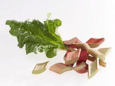 Print of Rhubarb pieces and rhubarb leaf