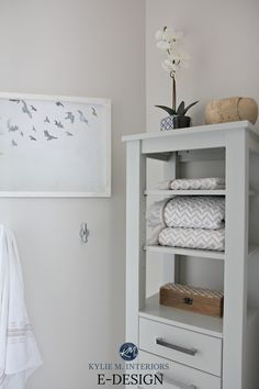 Benjamin Moore Classic Gray on east facing wall in bathroom. Kylie M E-design Off White Paint Colors, Top Paint Colors, Light Paint Colors, Best Neutral Paint Colors, White Wall Paint, Light Gray Paint, Bathroom Paint Colors, Kitchen Paint Colors, Paint Colors For Home