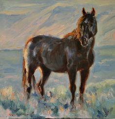 """Blue"", stallion at the Sand Wash Basin. From my series, ""Wild Horses, Portraits of Freedom"" Karen McLain Studio"