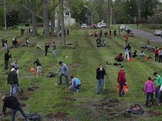 Hantz Woodlands seeks volunteers for Saturday planting