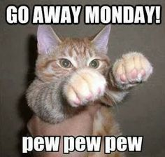 I don't really have any reason to complain about Monday anymore, this is just funny. Pew, Pew, Pew