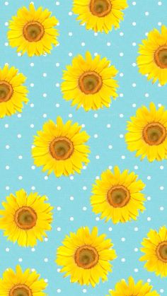 Sunday Sunflowers By Rosieharbottle