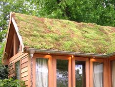Sedum roof.  absorbs rainwater, lowers temperature, and doesn't need trimming!   You have to have a solid structure for this, though.  This photo is nice with the copper gutters and rain chains.