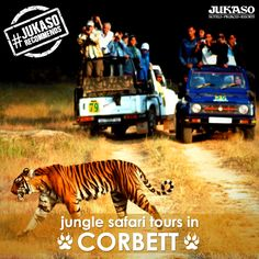 A trip to Corbett is incomplete without 'Wildlife Safaris' in Corbett National Park. Let the excitement begin! #JukasoRecommends