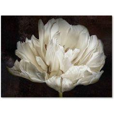 Trademark Fine Art 'Double White Tulip' Canvas Art by Cora Niele, Size: 35 x 47, Multicolor