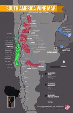 South America Wine Map by Wine Folly #map #southamerica #wine