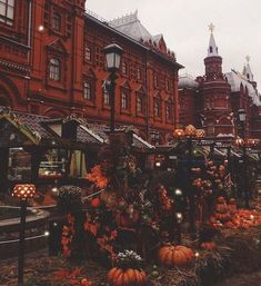 autumn aesthetic images, image search, & inspiration to browse every day. Autumn Cozy, Fall Winter, Autumn Witch, Happy Autumn, Time Of The Year, Autumn Inspiration, Travel Inspiration, Fall Season, Fall Halloween