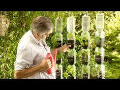 ¿Cómo hacer una huerta de riego por goteo con botellas recicladas? - YouTube