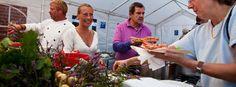 Læsø jomfruhummerfestival, østerby havn med bl.a. kokkekonkurrence. Lille, lokalt arrangement.