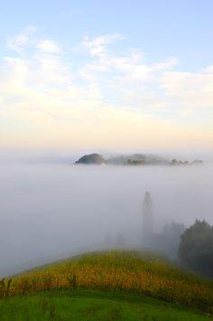suedsteirische weinstrasse foto 10 Fotografie • We live in the Sky... Nebelschwaden an der Südsteirischen Weinstraße