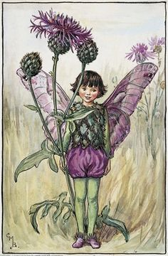 llustration for the Greater Knapweed Fairy from Flower Fairies of the Summer. A fairy stands to attention facing front, holding a knapweed flower in her left hand.  										   																										Author / Illustrator  								Cicely Mary Barker