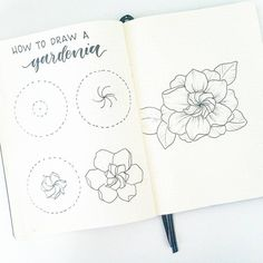 How to draw a Gardenia flower. Gardenias have always looked like a little spiral flower inside of a bigger flower, so that's how I've broken down the steps. Botanical Line Drawing, Floral Drawing, Botanical Drawings, Drawing Flowers, Flower Drawings, How To Draw Flowers, Flower Drawing Tutorials, Flower Sketches, Plant Drawing