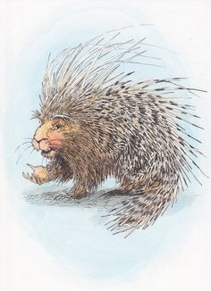 Pep the porcupine by by Cat and Milk Studio. www.catandmilk.com