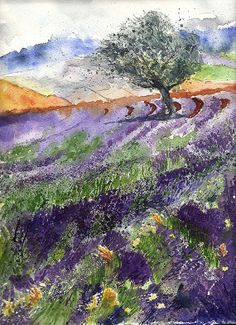 Original painting watercolor lavender field 9x12 by YuliaShe, $130.00