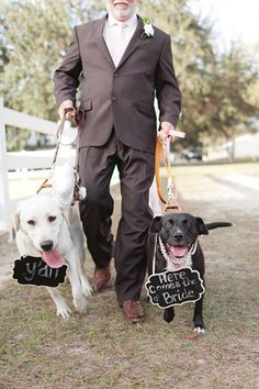 sweet pups at the ceremony! | Andi Mans #wedding