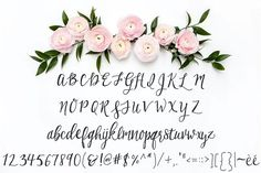 Birchwood Calligraphy Font by Printable Wisdom on @creativemarket