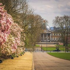 Springtime at the Laeken Royal Palace. Pic by @brusselspicture