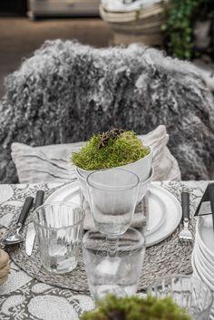 © Paulina Arcklin | HEDENTORPS PLANTSKOLA & LIV IN SWEDEN www.hedentorps.se