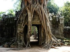 Angkor Wat - Cambodia - 24 Surreal Places Around The World To Visit Before You Die Places Around The World, Oh The Places You'll Go, Places To Travel, Places To Visit, Around The Worlds, Travel Destinations, Tanzania, Laos, Vietnam