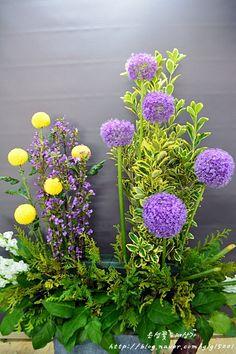 Allium, Flowers, Plants, Floral Arrangements, Church Decorations, Flora, Royal Icing Flowers, Floral, Plant