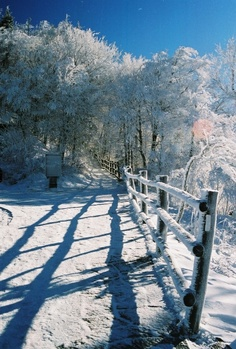 Fresh fallen snow in the beautiful Smoky Mountains, just outside of Gatlinburg Tennessee