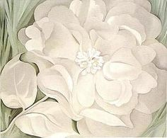 White flower by georgia okeeffe 1932 art pinterest georgia georgia okeeffe white calico flower 1931 mightylinksfo