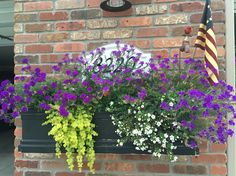 Summer 2016 flower boxes