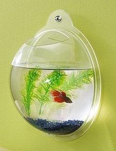 Wall Hanging Fish Bowl Bubble Aquarium Free Decorations
