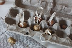 Simple gilded ornaments, inspired by nature, made by hand, fit for a queen (our Christmas tree).