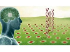 2012-2022 Report on Global Alzheimer's Disease Market Competition, Status and Forecast, Market Size by Players, Regions,