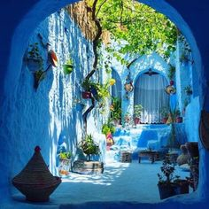 The Blue Pearl 🦋 Chefchaouen, Morocco. Photo by Tag someone you would share this trip with 💙 Chefchaouen Morocco, Pinterest Foto, Moroccan Garden, Moroccan Style, Morocco Travel, Outdoor Gardens, Outdoor Living, Beautiful Places, Beautiful Streets